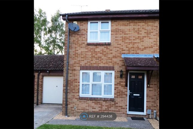 Thumbnail Semi-detached house to rent in Ash Tree Close, Farnborough