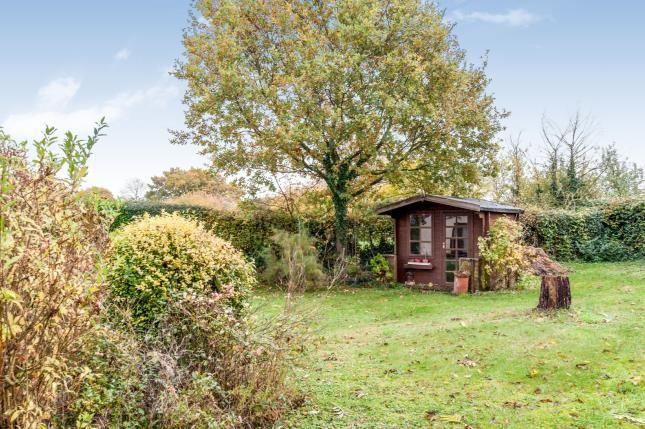 Garden of Edwardstone, Sudbury, Suffolk CO10