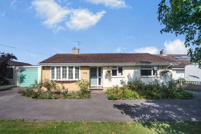 Thumbnail Detached bungalow for sale in Ham, Taunton