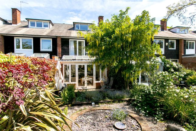 Thumbnail Property for sale in Rockwell Gardens, London