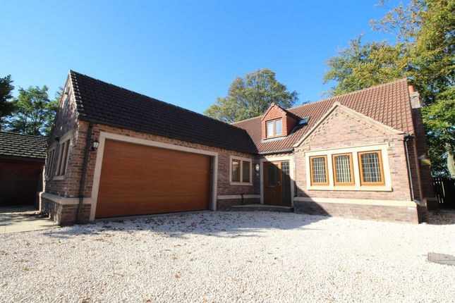 Thumbnail Detached house to rent in Church Lane, Bessacarr, Doncaster