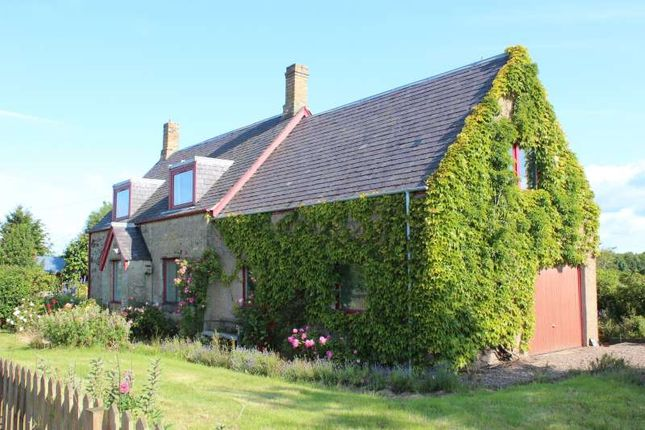 Thumbnail Cottage for sale in Orange Lane, Coldstream