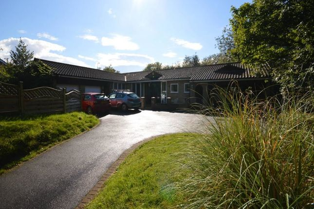 4 bed bungalow to rent in Lindum Grange School Lane, Canwick, Lincoln LN4
