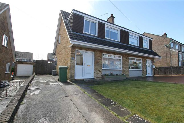 Thumbnail Bungalow for sale in Claverton Close, Beddau, Pontypridd