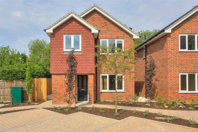 Thumbnail Detached house for sale in Holly Close, St. Julians Road, St Albans, Hertfordshire