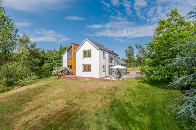 Thumbnail Detached house for sale in Ratlinghope, Shrewsbury