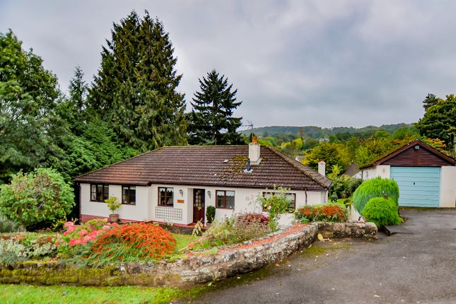4 bed detached bungalow for sale in Mitchel Troy Common, Monmouth NP25