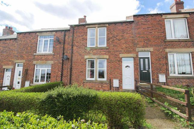 Thumbnail Terraced house to rent in Vera Street, Greenside, Ryton