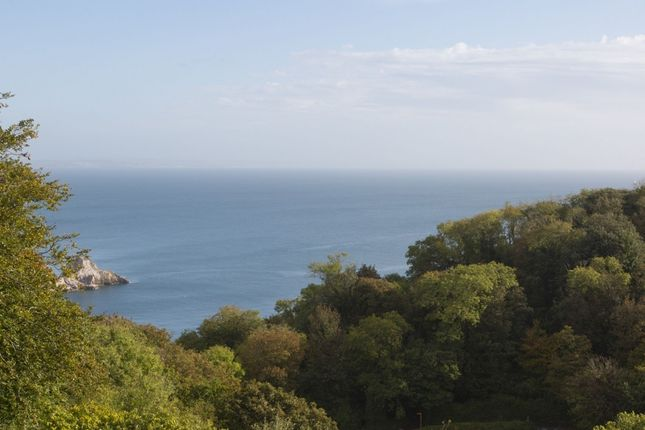 Thumbnail Flat for sale in Sachs Lodge Asheldon Road, Torquay