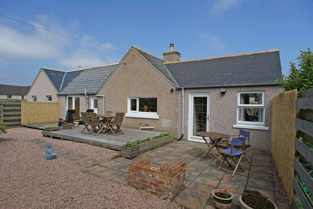 Thumbnail Cottage for sale in Dunnet, Caithness, Highland