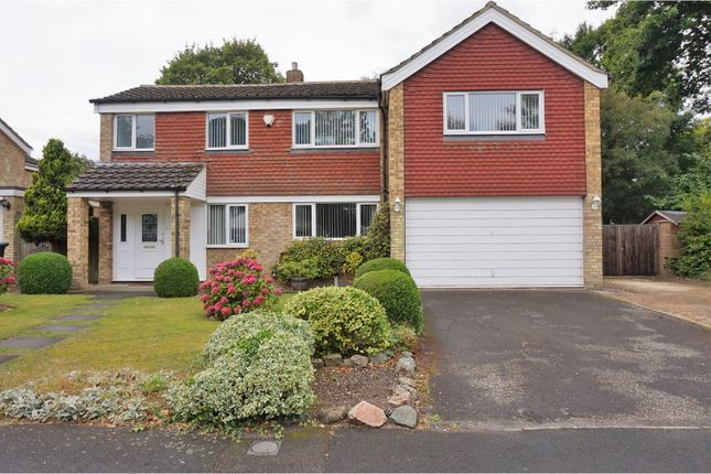 Thumbnail Detached house for sale in The Covert, Gravesend
