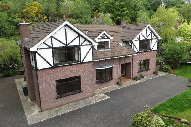 Thumbnail Detached house for sale in Greenan Road, Newry