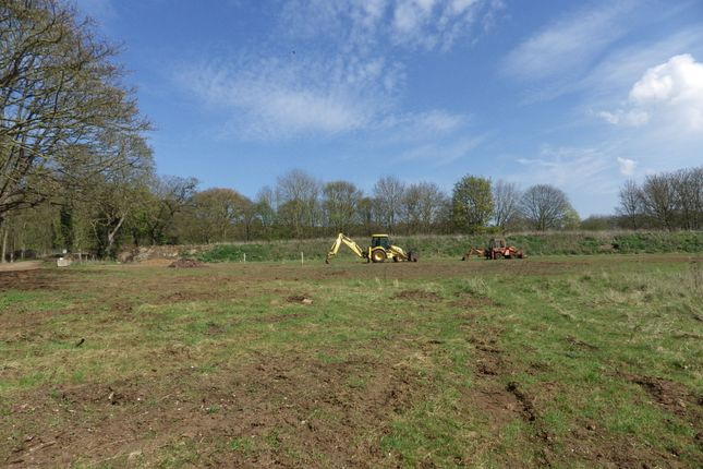 Thumbnail Land for sale in Hunstanton Road, Heacham