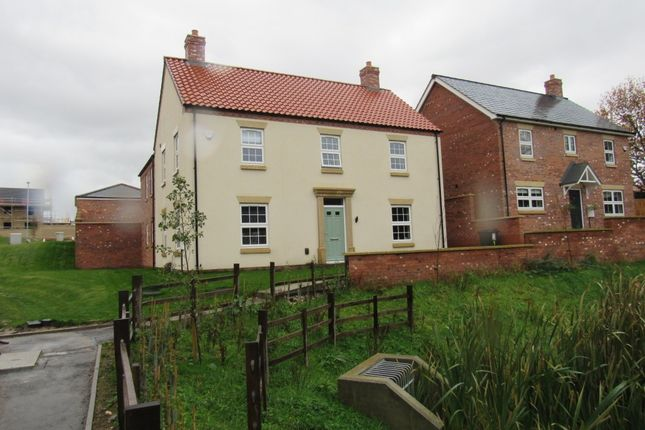 Thumbnail Detached house to rent in Ticklepenny Drive, Eastfield Road, Louth