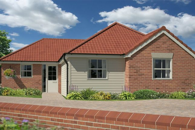 Thumbnail Detached bungalow for sale in Stanley Road, Wivenhoe, Essex