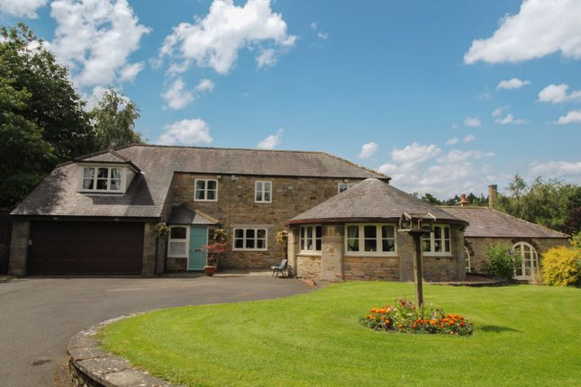 Thumbnail Detached house for sale in Wylam