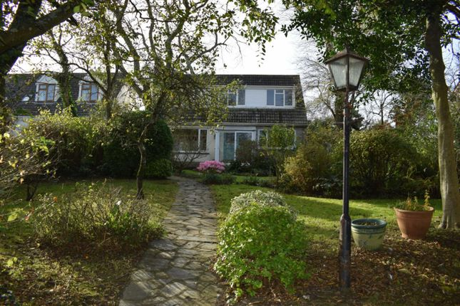 Thumbnail Detached house to rent in Bowden, Stratton, Bude