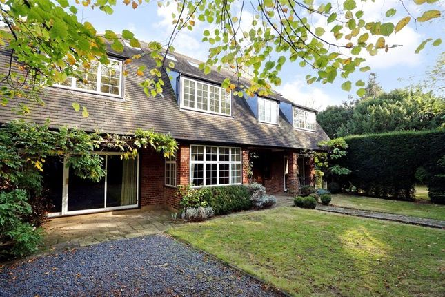 Thumbnail Detached house for sale in Burghley Road, Wimbledon