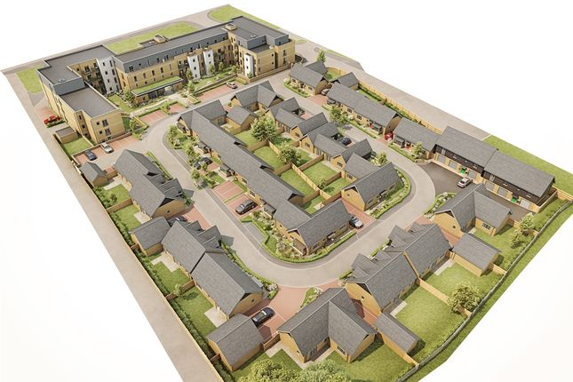 Thumbnail Property for sale in Gosford Road, Beccles