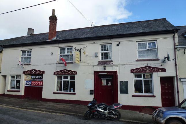 Park Street, Devon: Crediton EX17