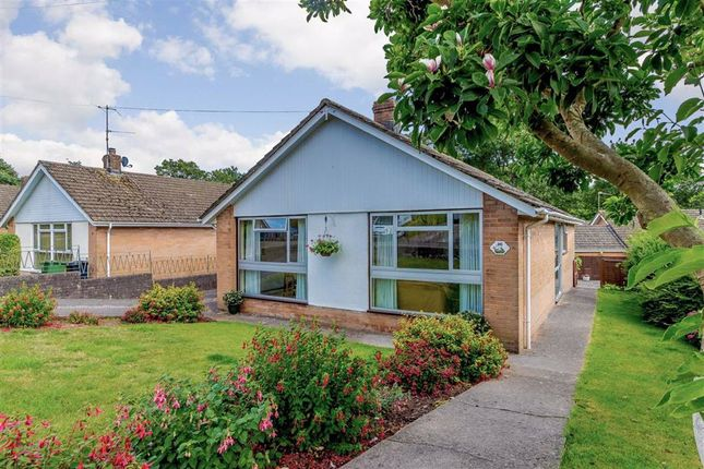 Thumbnail Bungalow for sale in Norse Way, Sedbury, Chepstow