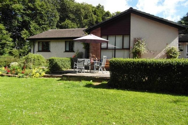 Thumbnail Detached bungalow for sale in Silver Birches, Hawick