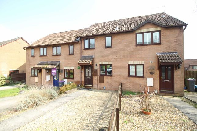 Thumbnail Terraced house to rent in Heather Court, Ty Canol, Cwmbran