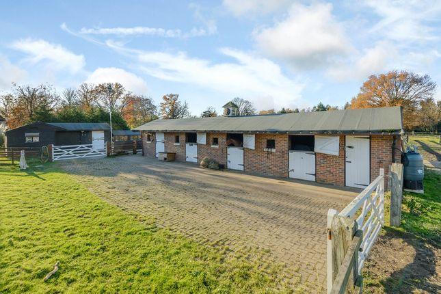 Equestrian Property For Rent Surrey