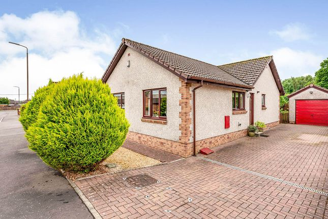 Thumbnail Bungalow for sale in Shierlaw Gardens, Airth, Falkirk, Stirlingshire