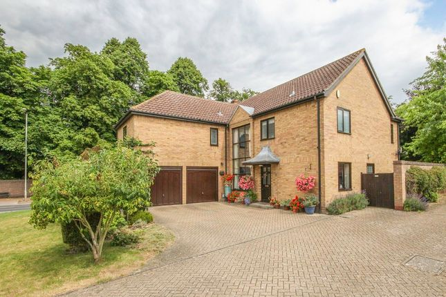 Thumbnail Detached house for sale in Swan Grove, Exning, Newmarket