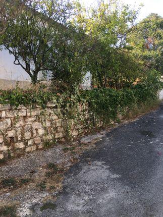 Ruin 8 of Lefkimmi, Corfu, Ionian Islands, Greece