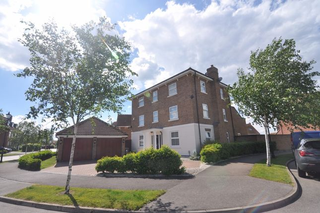 Thumbnail Detached house for sale in The Pines, Hull, Kingston Upon Hull