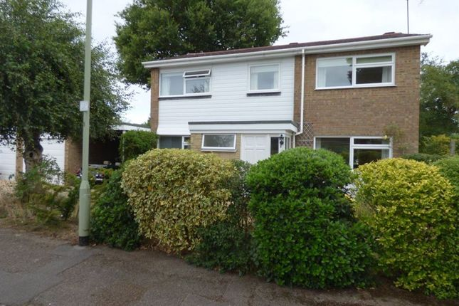 Thumbnail Property to rent in Wildcroft Drive, Finchampstead, Wokingham