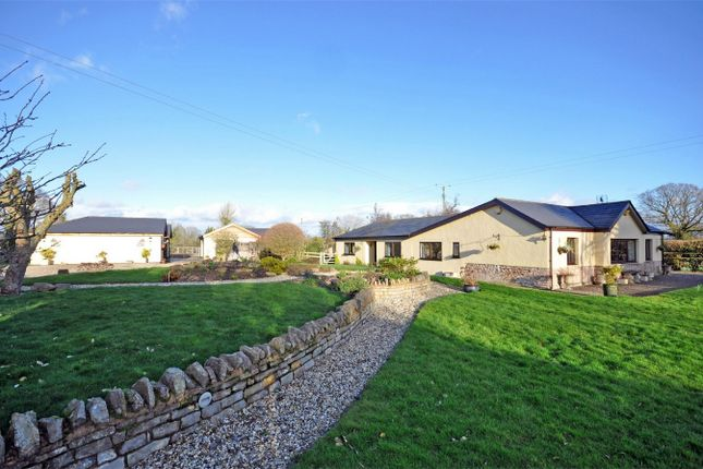 Thumbnail Detached bungalow for sale in Lowbands, Redmarley, Gloucester