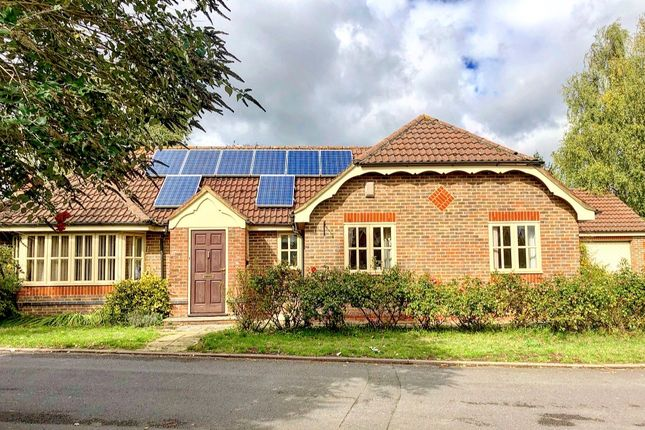 3 bed detached bungalow to rent in Blackman Close, Kennington, Oxford OX1