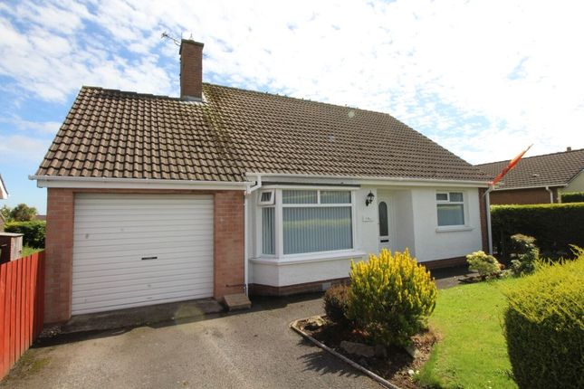 Thumbnail Bungalow for sale in Dromore Road, Carrickfergus