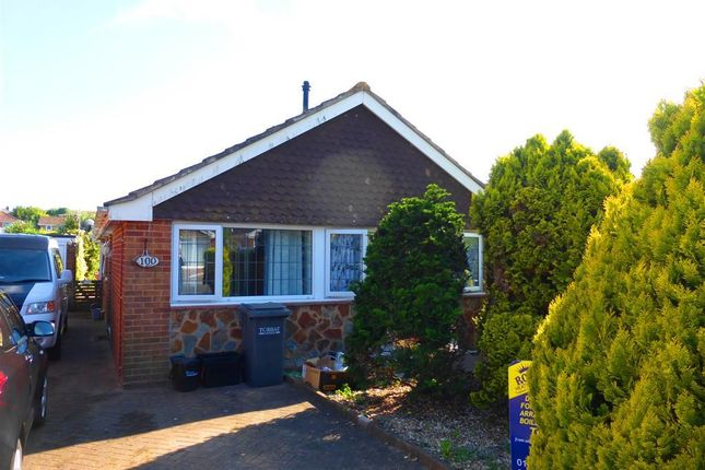 Thumbnail Bungalow to rent in Gibson Road, Paignton