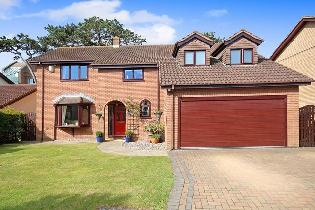 Thumbnail Detached house for sale in The Woods Higher Lincombe Road, Torquay