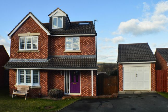 Thumbnail Detached house to rent in Lassels Rigg, Prudhoe