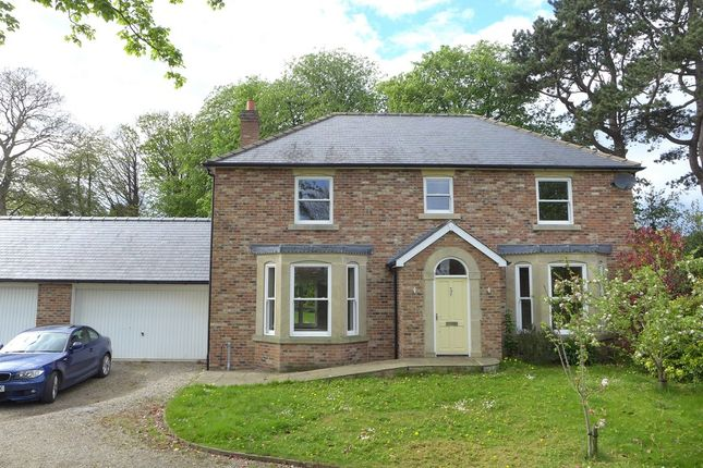 Thumbnail Detached house to rent in Ure Bank Terrace, Ripon
