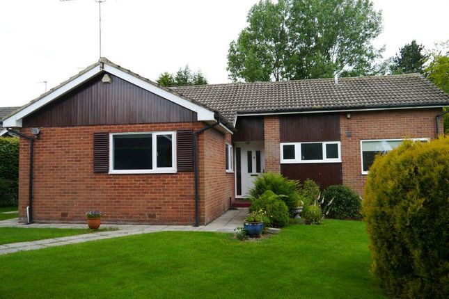 Thumbnail Detached bungalow to rent in Parklands, Ponteland, Newcastle Upon Tyne