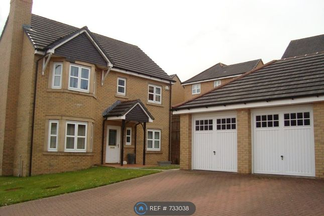 Thumbnail Detached house to rent in Cairngorm Court, Hamilton