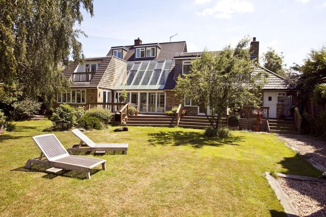 Thumbnail Detached house to rent in Riverside Drive, Esher