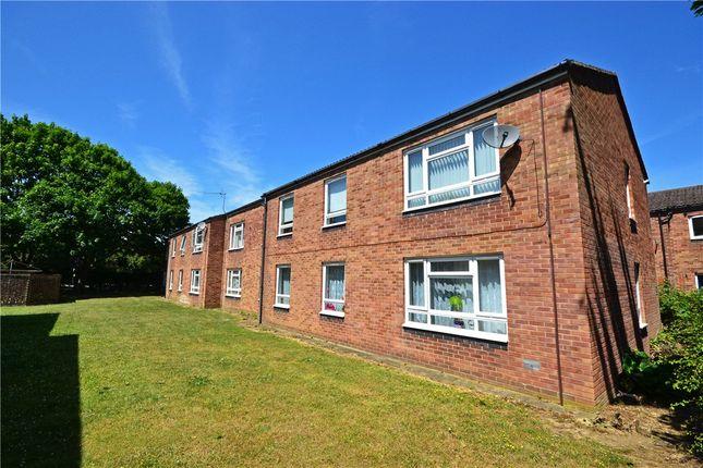 Thumbnail Flat to rent in Molewood Close, Cambridge