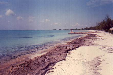 Land for sale in Fernandez Bay, Cat Island, The Bahamas