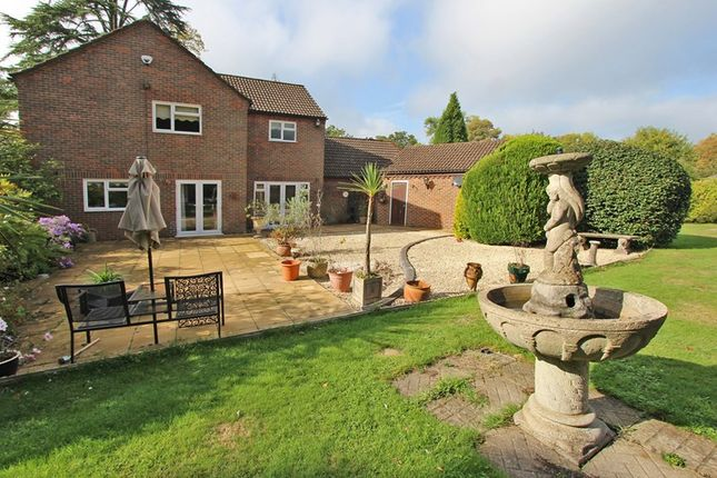Thumbnail Detached house for sale in Haskells Close, Lyndhurst