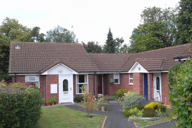 Thumbnail Terraced bungalow to rent in Ranelagh Road, Malvern