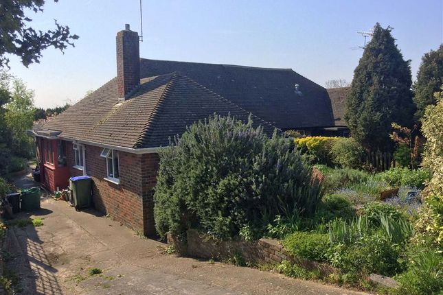 Thumbnail Semi-detached bungalow for sale in Clare Road, Lewes, East Sussex