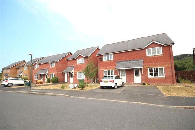 Thumbnail Property to rent in Maesmawr, Llanbadarn Fawr, Aberystwyth