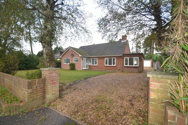 Thumbnail Detached bungalow to rent in Sandy Lane, St. Ives, Ringwood